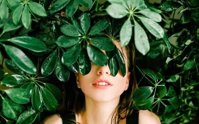 Oráculo das folhas: veja o que a natureza revela para você