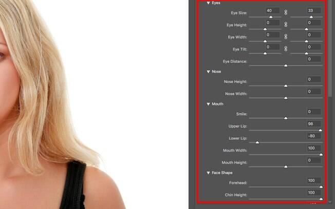 As definições do rosto podem ser alteradas mudando os valores apresentadas no menu direito da tela, garantindo assim um resultado mais preciso.