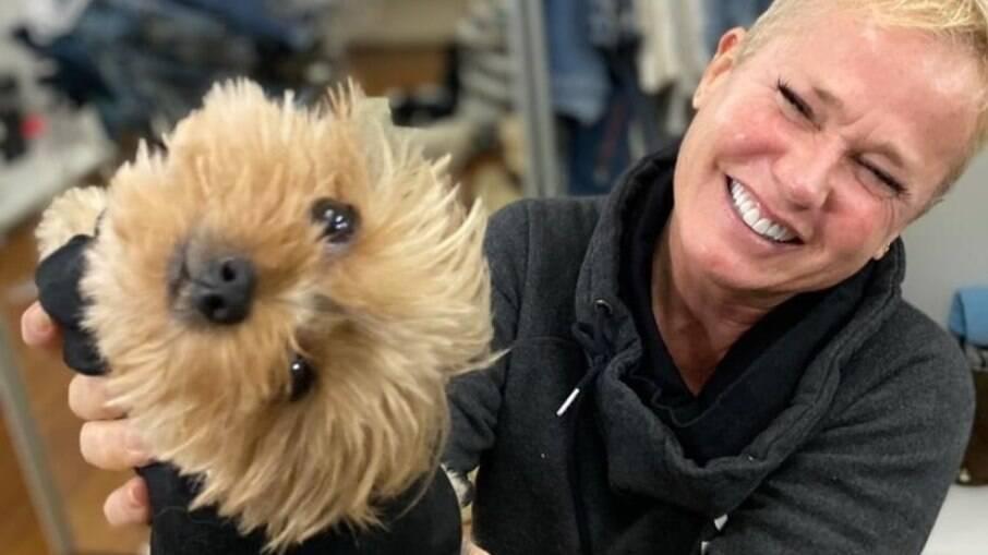 Xuxa compartilha gesto de carinho de sua cachorrinha de estimação, Doralice