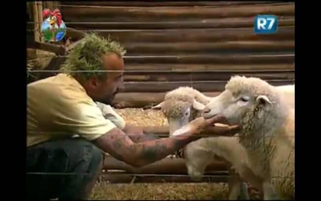 Gui Pádua faz carinho em Rita, sua ovelha predileta
