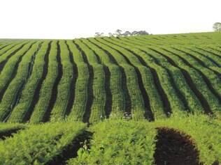 O Programa de Apoio ao Médio Produtor Rural (Pronamp) aplicou R$ 8,96 bilhões, aumento de 19,7% se comparado aos R$ 7,48 bilhões aplicados em 2012/13