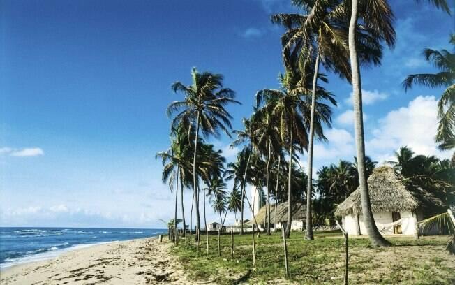 Próxima a Salvador, a Praia do Forte conta com 12 km de areia fofa e natureza exuberante