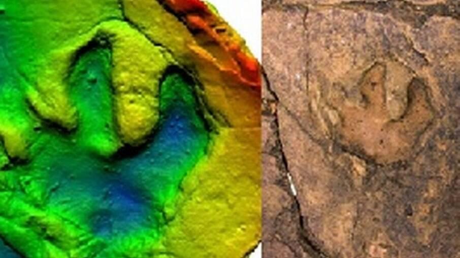 Pegadas de dinossauro no Mato Grosso do Sul