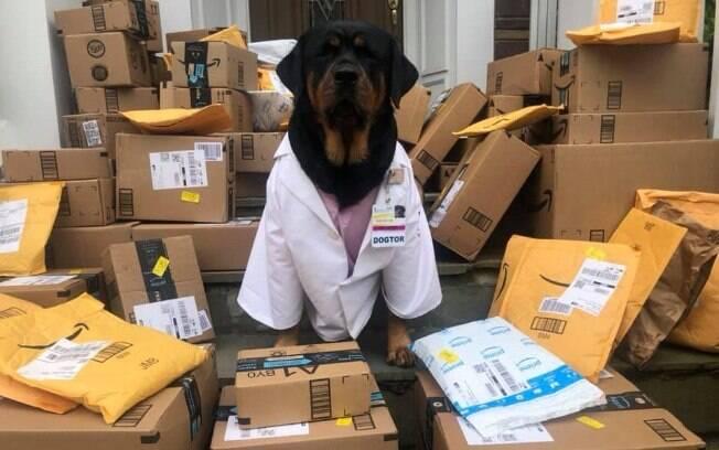 Loki e Caroline buscam ajudar entregando kits para ajudar os enfermeiros