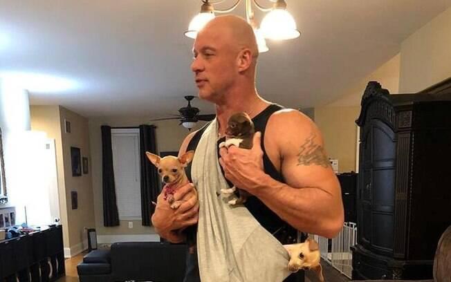Bobby e alguns de seus Chihuahuas