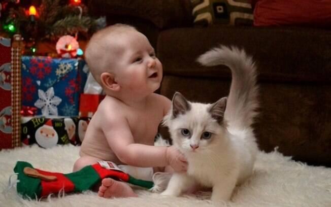 Um gatinho e um bebêzinho.