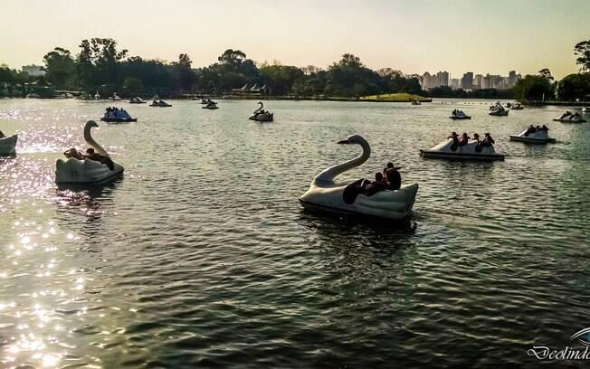 Outro lugar repleto de atividades de verão é o Parque Ecológico do Tietê, que tem cerca de 1400 hectares