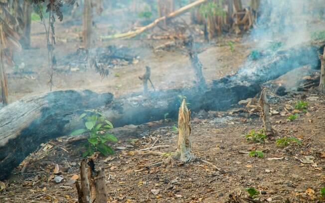 Queimada atingiu comunidade indígena do Acre