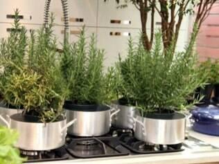 Kitchen Garden com hortaliças e condimentos harmoniza o ambiente da cozinha