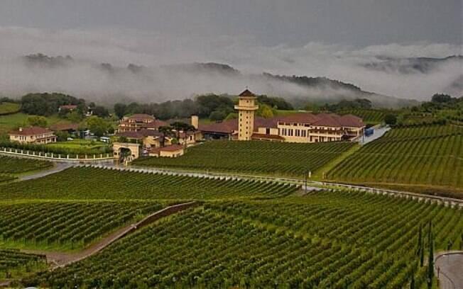 Os pampas gaúchos agora produzem vinho