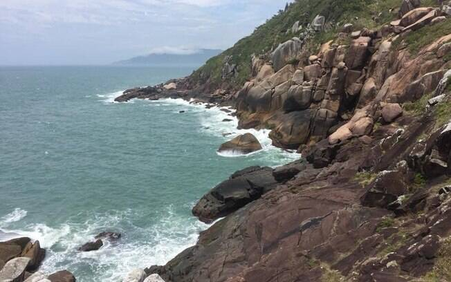 Ilha do Campeche está entre as praias de Santa Catarina. Por lá, há três opções de como chegar