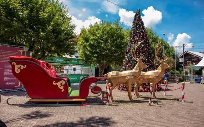 Trenó e árvore de Natal decorada em Campos do Jordão