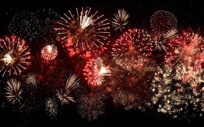 Confira o que fazer para seu pet se estressar menos com os fogos de artifício