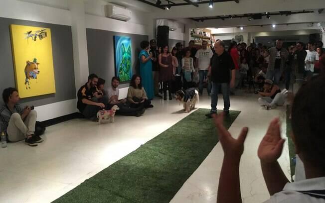 Matilha cultural promove a adoção de animais por meio da arte e do cinema
