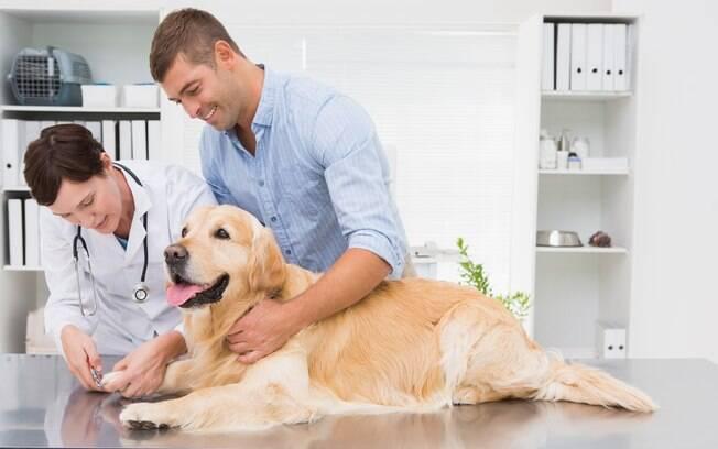 O plano de saúde para pets pode ser importante em alguns casos