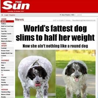Cachorra chegou a pesar 58 quilos. Com regime e exercício físico ela perdeu metade do seu peso