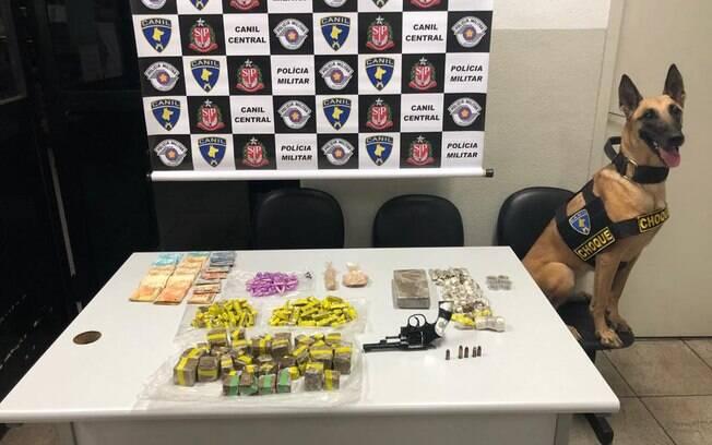 Drogas, dinheiro e arma encontradas pelo Canil da PM