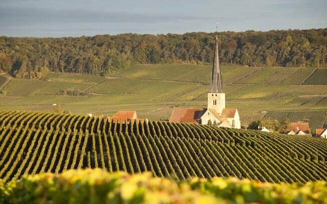 Estradinhas levam a belos vinhedos de produtores espalhados pelos mais de 60 vilarejos