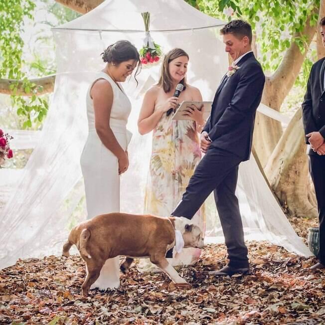 Diesel fazendo xixi em noiva