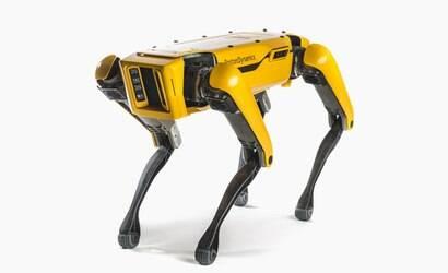 Cão-robô urina cerveja e anda conforme o ambiente