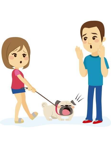 O medo de cachorros patológico pode ser combatido com auxílio de um profissional.