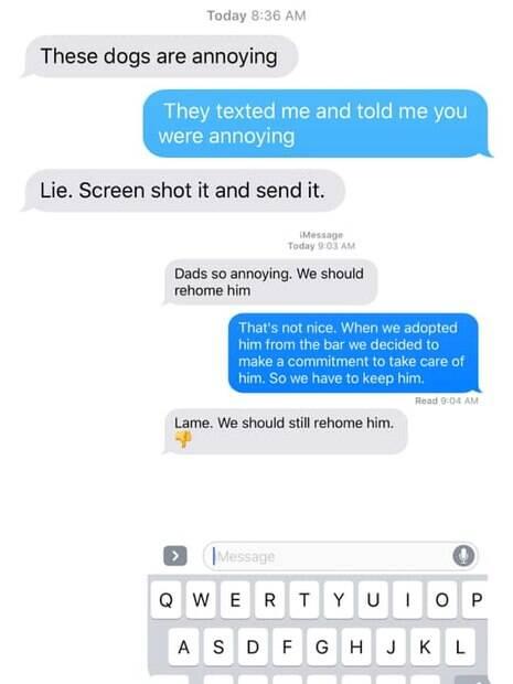 mensagem de texto dos cães