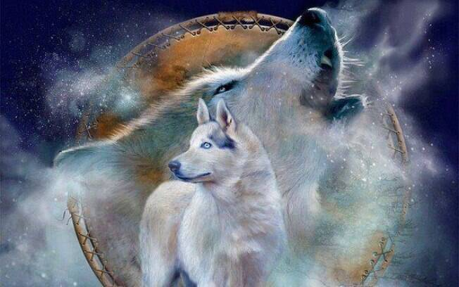 Rodrigo Krhom: Xamã Lobo Branco