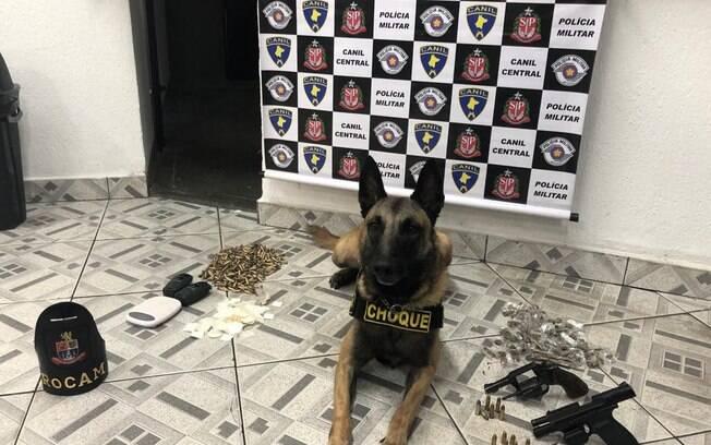 Canil da PM apreende drogas e armas em São Paulo