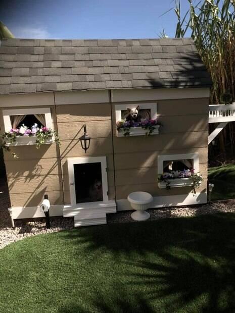 Casa de cachorro construída por Victoria Palmer