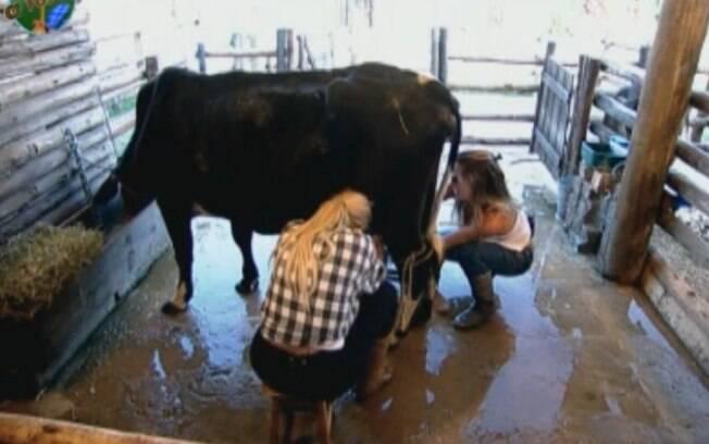 Raquel Pacheco e Monique Evans aprendem com Joana Machado a ordenhar a vaca