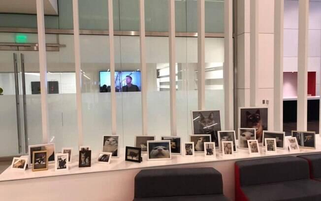 Vinte e seis novas fotos estão atualmente no escritório