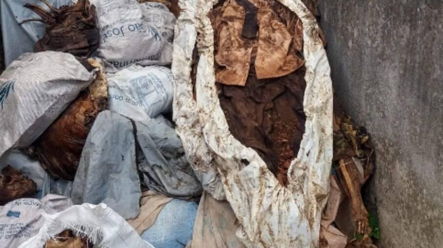 PE: cemitérios com corpos amontoados a céu aberto são denunciados por moradores