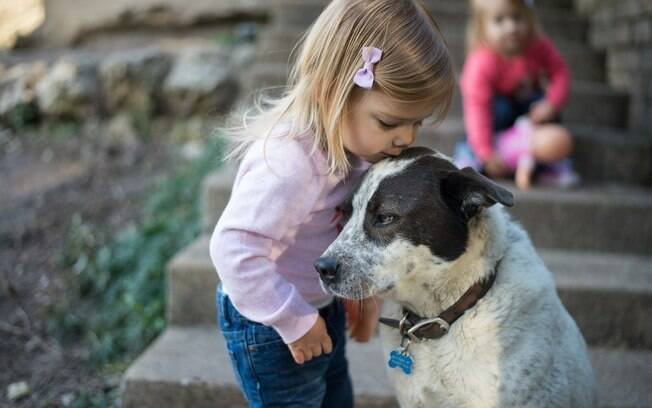 É possível estimular a convivência entre cães e crianças