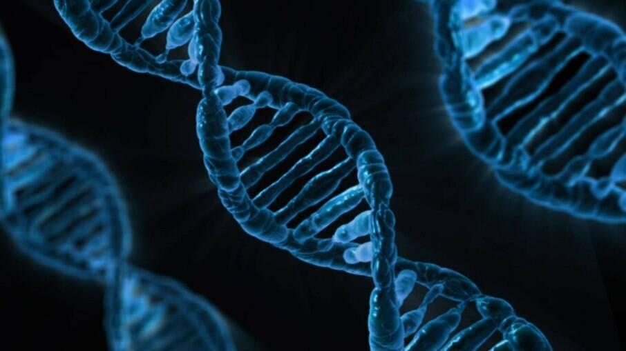 Genes neandertais podem auxiliam na proteção ao desenvolvimento da Covid-19