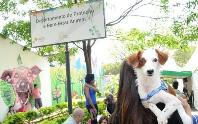 Prefeitura de Campinas sanciona criação de Banco de Ração para Animais