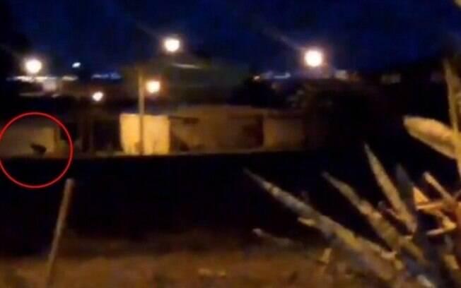 Os vídeos começaram a circular pelas redes sociais e intrigaram moradores do DF