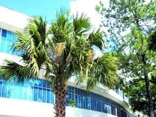 História. Projeto do prédio foi feito por Oscar Niemeyer, nos anos 50, mas só parte dele foi construído