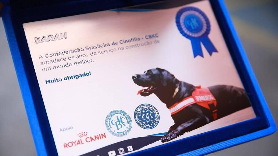 Placa recebida em homenagem aos serviços prestados pela labradora