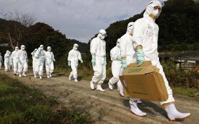 Gripe aviária se espalha pelo Japão e 3 milhões de aves são sacrificadas