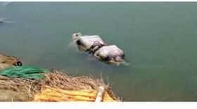 Corpos de vítimas da Covid-19 estão sendo jogados no Ganges
