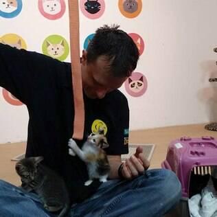 Alexandre Rossi fala sobre o comportamento dos gatos