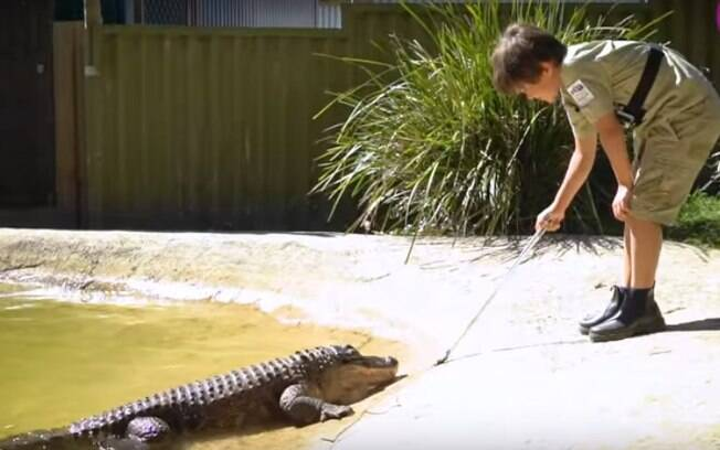Garoto interage com o crocodilo Crunch e turistas ficam impressionados com seu desempenho no parque da Austrália