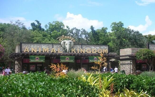 O parque temático Animal Kingdom, onde aconteceu o acidente
