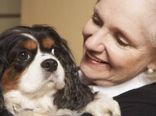 Cães são tão importantes quanto parentes para alguns idosos