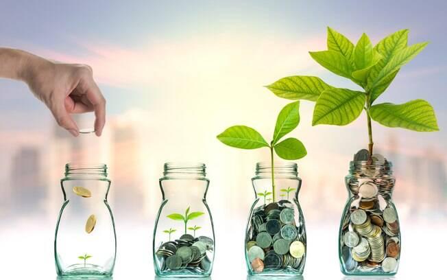 A melhor forma de financiamento do saldo negativo das contas externas é o investimento direto no país (IDP), já que, desta forma, os recursos são aplicados no setor produtivo