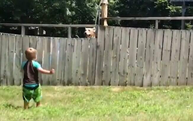 Menino de dois anos e cão do vizinho encontram uma maneira bem inteligente para brincarem juntos