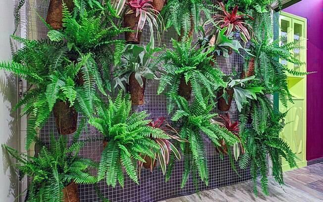 ideias jardim reciclado : ideias jardim reciclado:Uma rede de nailón foi usada como suporte para o jardim vertical de