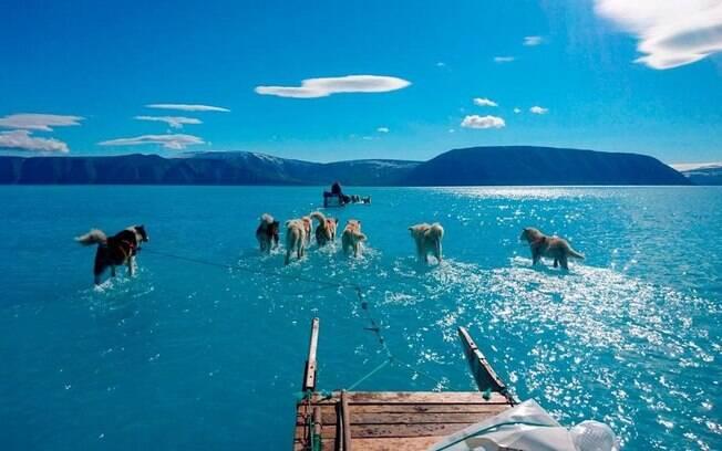 A imagem de 2019 do gelo derretido na Groenlândia, percorreu o mundo; em vez de 3°C, a temperatura registrada foi cinco vezes mais alta