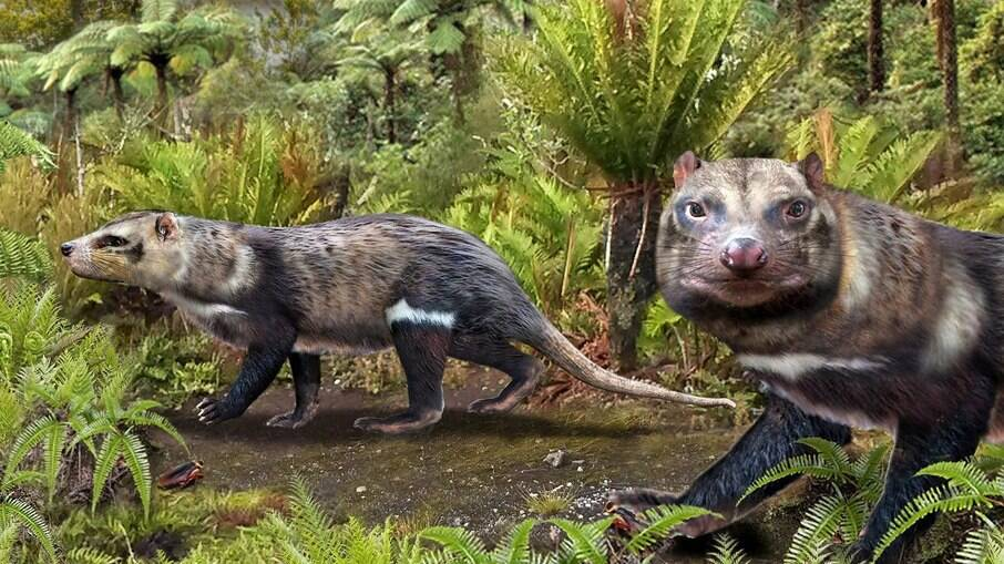 Projeção de como seria o mamífero que teve o fóssil encontrado no Chile