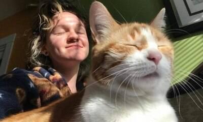 9 meses após ter sido cremado, gato é encontrado vivo